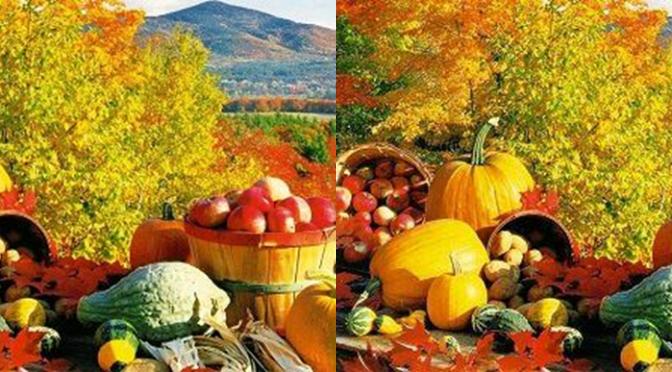 Verduras y frutas de otoño
